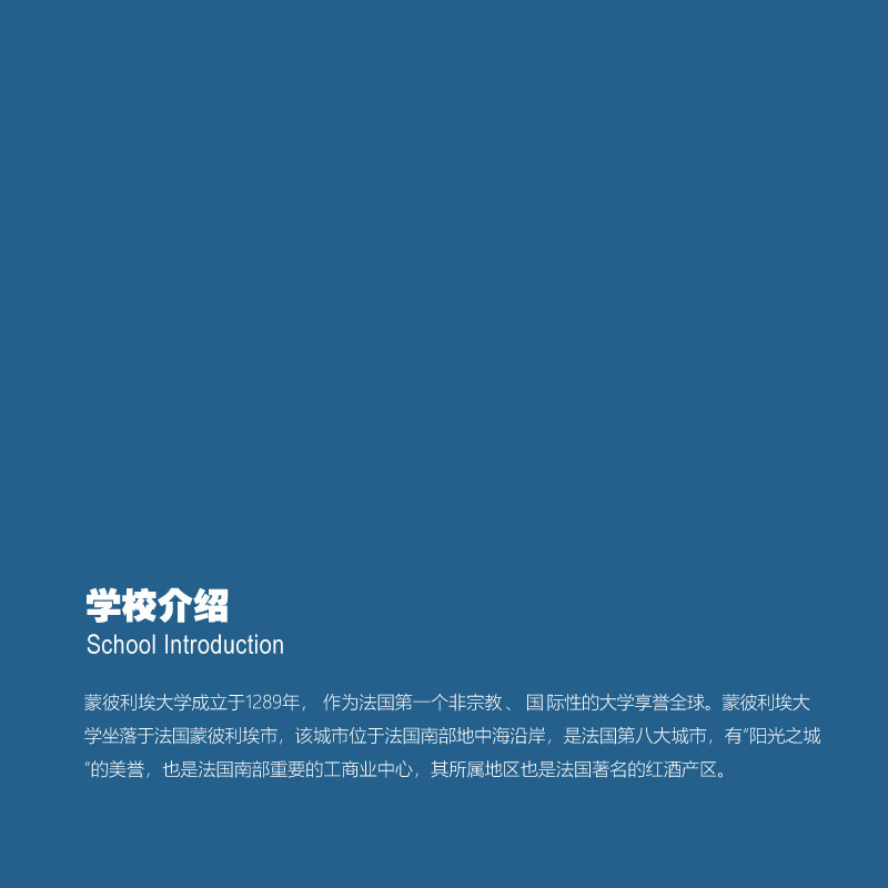 DHM项目简章(6)-10.jpg